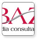 BAZ Media Consultants